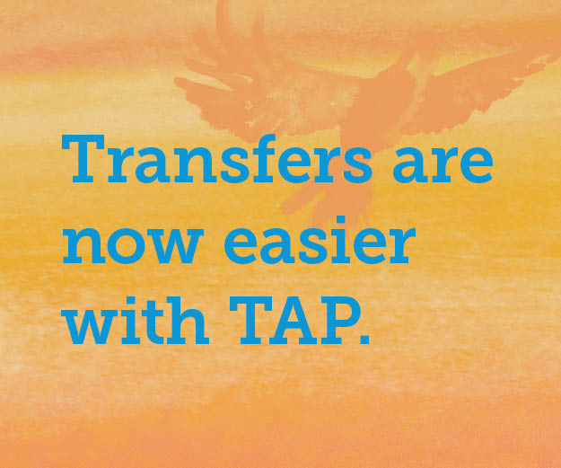 Transfers_Made_Easy_RGBWeb_Ads_300x250_generic